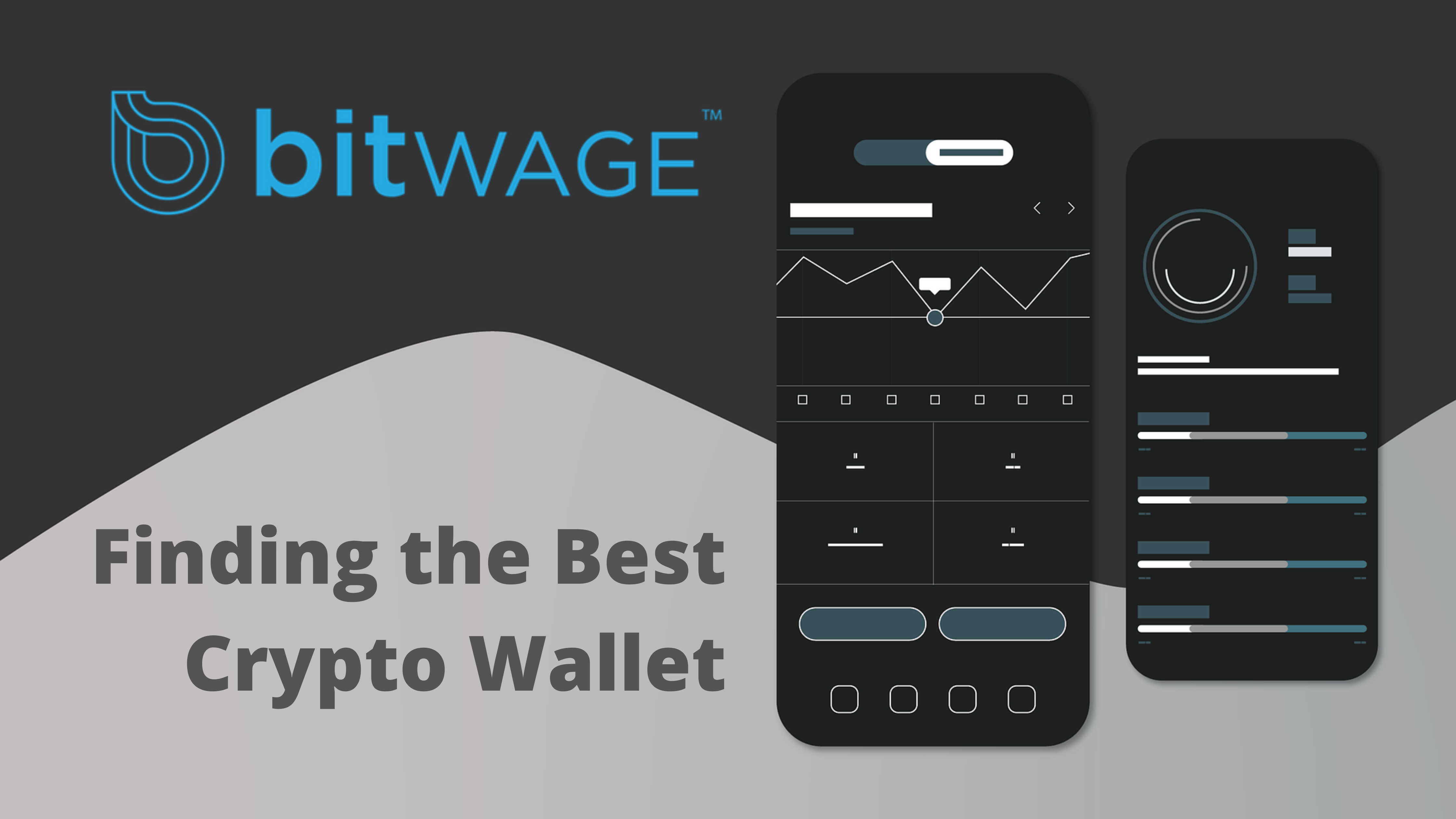 The Only Guide You Need to Find the Best Crypto Wallet